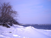 Warwick Framed Prints - Winter on Narragansett Bay Framed Print by Kate Gallagher
