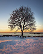 Seacoast Photo Posters - Winter on the Coast Poster by Eric Gendron