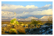 Las Cruces New Mexico Prints - Winter Organ Mountains Print by Jack Pumphrey