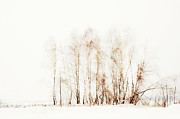 Original Watercolor Photos - Winter Painting VI. Aquarel by Nature by Jenny Rainbow