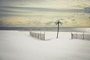Winter Paradise Print by Evelina Kremsdorf