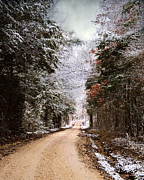 Winter Scene Photo Prints - Winter Paradise Print by Jai Johnson