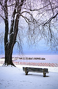 Park Bench Framed Prints - Winter park in Toronto Framed Print by Elena Elisseeva