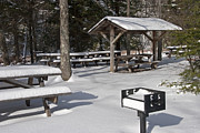 Picnic Table Framed Prints - Winter Picnic Framed Print by John Stephens