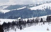 Winter Picture I Print by Nedelcu Valeriu