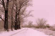 Winter Pink Print by Carol Groenen