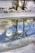 Winter Reflections Print by John  Greaves