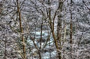 Pigeon Forge Photos - Winter River by Mark Bowmer