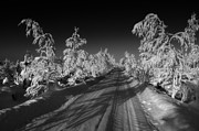 Snow Drifts Photos - Winter Road by Mountain Dreams