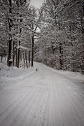 Robert Hellstrom Framed Prints - Winter Road Framed Print by Robert Hellstrom