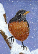 Fran Brooks - Winter Robin