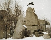 Birds In Snow Posters - Winter Rocks Poster by Gothicolors And Crows