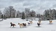 Winter Run Print by Peter Lindsay
