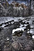 Winter Scene Print by Bill Cantey