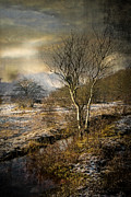 Winter Scenery Print by Hugo Bussen