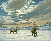 Winter Sky-elk   Print by Paul Krapf