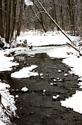 Landscape Photos - Winter Snow by Amanda Kiplinger