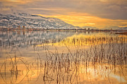 Okanagan Framed Prints - Winter Solstice 5 Framed Print by Tara Turner