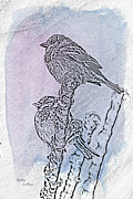 Ice-covered Prints - Winter Sparrows 2 Print by Betty LaRue