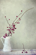 Reds Photo Prints - Winter Still Life Print by Priska Wettstein