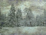 Winter Storm Mixed Media - Winter storm by Irina Hays