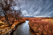 Orange Trees Prints - Winter Storm over Owens River Print by Cat Connor