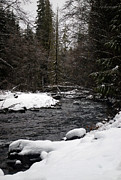 Mt Rainier Stream Framed Prints - Winter Stream Framed Print by Chanda Henne