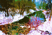 Snow Scenes Digital Art Metal Prints - Winter Stream Metal Print by CHAZ Daugherty
