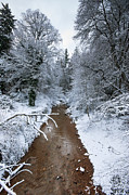 Winter Scene Digital Art Prints - Winter Stream Print by Keith Thorburn