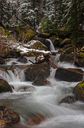 Stream Photos - Winter Stream Tranquility by Mike Reid
