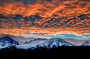 Eastern Sierra Posters - Winter Sunset Poster by Cat Connor
