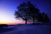 Winter Sunset Print by Hannes Cmarits