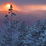 Landsape Prints - Winter Sunset - Kings Canyon Print by Stephen  Vecchiotti