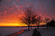 Winter Sunset Print by Terri Gostola