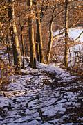 Frank Winters - Winter Trail