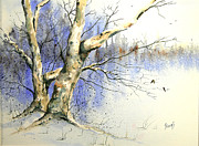 Sam Sidders - Winter Tree With Birds