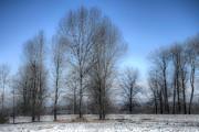 Spencer McDonald - Enchanted Winter