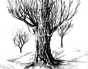 Mood Drawings Prints - Winter Trees Print by Teshia Art