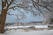 Fence Prints - Winter Vista Print by Bill  Wakeley