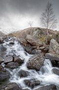 Cwm Idwal Posters - Winter Waterfall Poster by Christine Smart