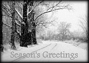 Snowy Road Prints - Winter White Seasons Greeting Card Print by Carol Groenen