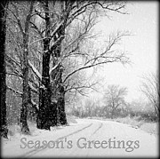 Snowy Road Prints - Winter White Seasons Greetings Print by Carol Groenen