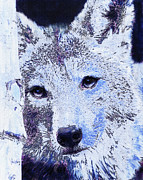 Wolf Digital Art Metal Prints - Winter Wolf Metal Print by Jane Schnetlage