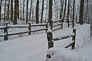 Split Rail Fence Prints - Winter wonder land Print by Magi Yarbrough