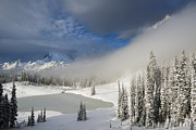 Winter Storm Photo Originals - Winter Wonderland by Mike  Dawson