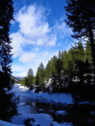 Idaho Scenery Prints - Winter Wonderland Print by Photography Moments - Sandi