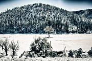Saija  Lehtonen - Winter Wonderland