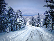 Winter Woodland Photo -country Roads Take Me Home -mountain Landscape -nature Print by Julie Magers Soulen