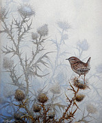 Wren Paintings - Winter Wren by Mike Stinnett