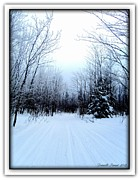 Rural Snow Scenes Digital Art Prints - Winterlude In Abitibi Temiscamingue Quebec  Print by Danielle  Parent